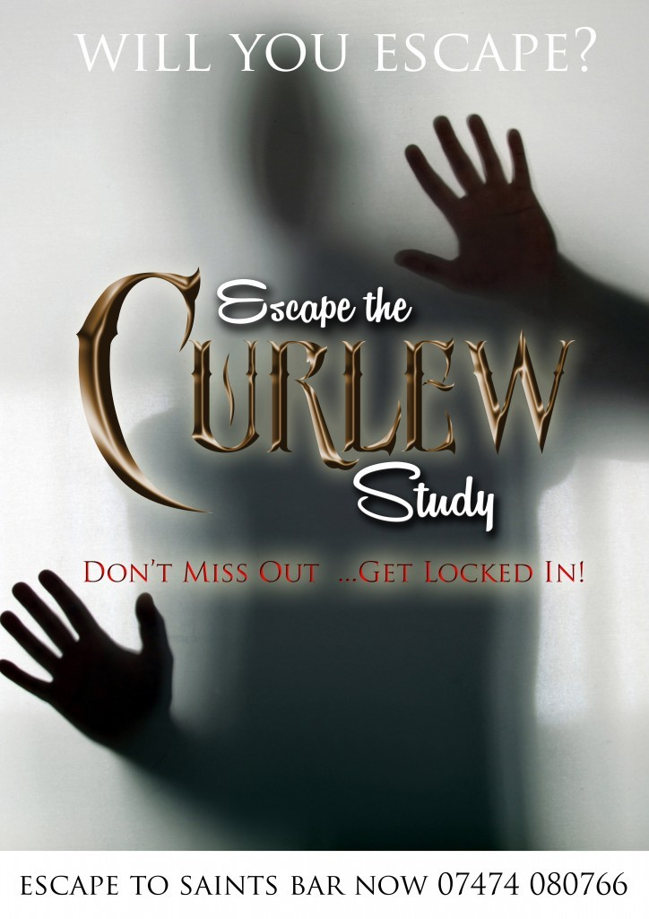 Escape the Curlew Studyescape room in United Kingdom